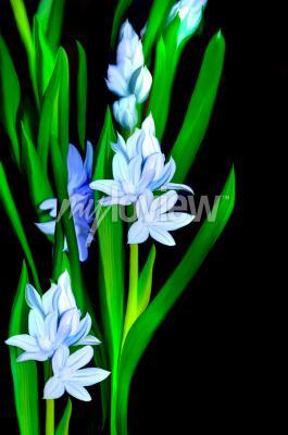 Carta da parati Lazurowe Kwiaty