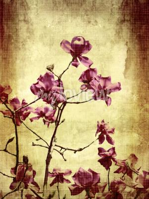 Carta da parati Bella grunge background con fiori di magnolia