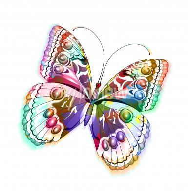 Adesivo Farfalla colorata isolato