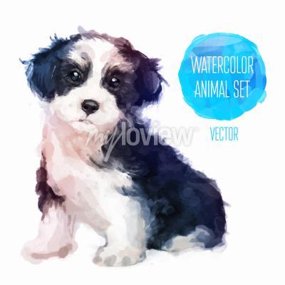 Poster Illustrazione di acquerello dipinto a mano di cane