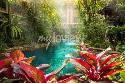 Carta da parati Stile della piscina della giungla sotto gli alberi e la casa di sfondo al sole