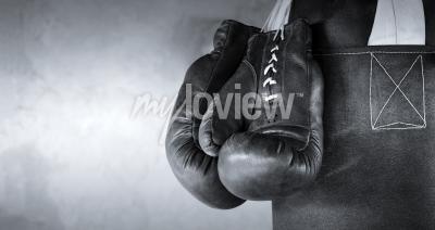 Carta da parati Boxing gloves