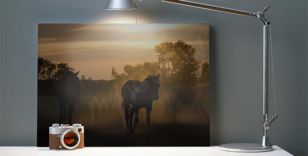 Quadro cavalli al tramonto