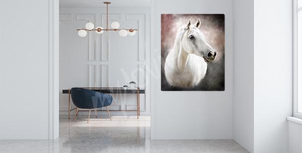 Quadro cavallo arabo
