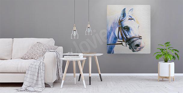Quadro cavallo in briglia