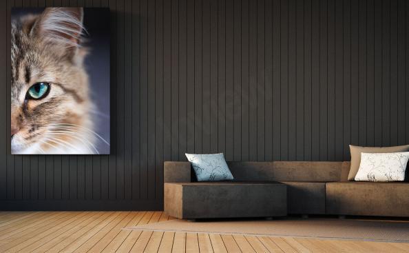 Quadro gatto per salotto