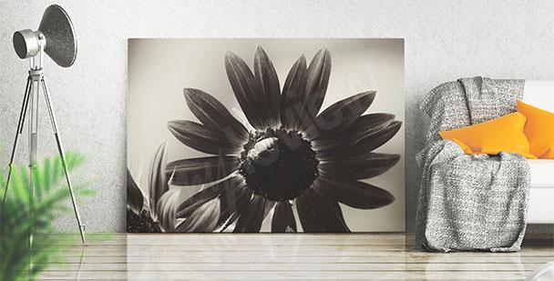 Quadro girasole bianco e nero