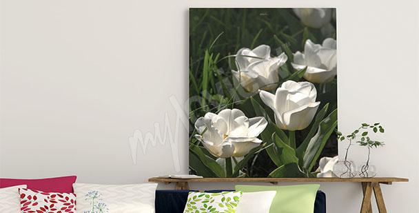 Quadro tulipani primaverili